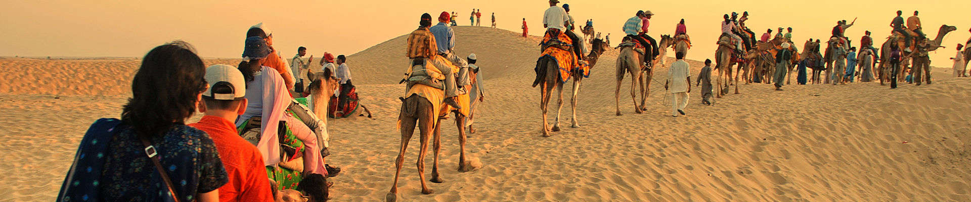 Desert Delight